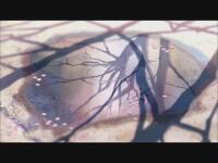 秒速5センチメートル(コミックス・ウェーブ)静謐で淡く囁きかけるような映像。思い出をのぞき込むようなささやかな世界。東京