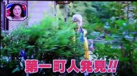 ルパン好きのおじいちゃん峰不二子「いやらしい女だね」w #ルパン三世  #ダーツの旅  #笑ってコラえて